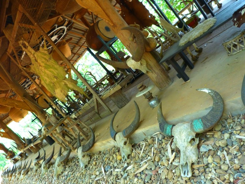 Black Temple Chiang Rai Thailand Animal Skulls