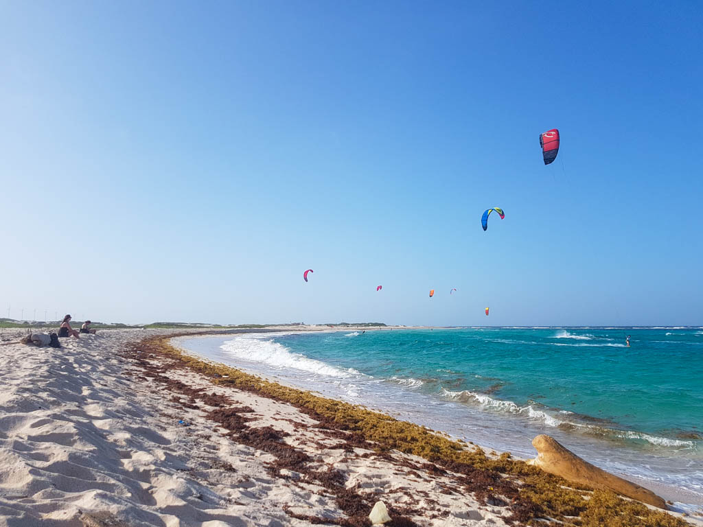 Kite surfing excursions in Aruba