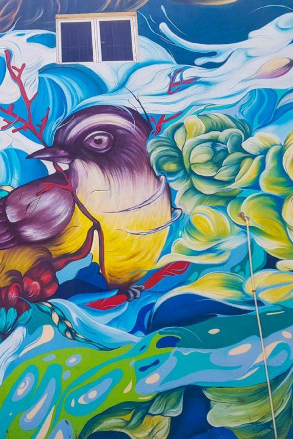Street Art Excursions in Aruba