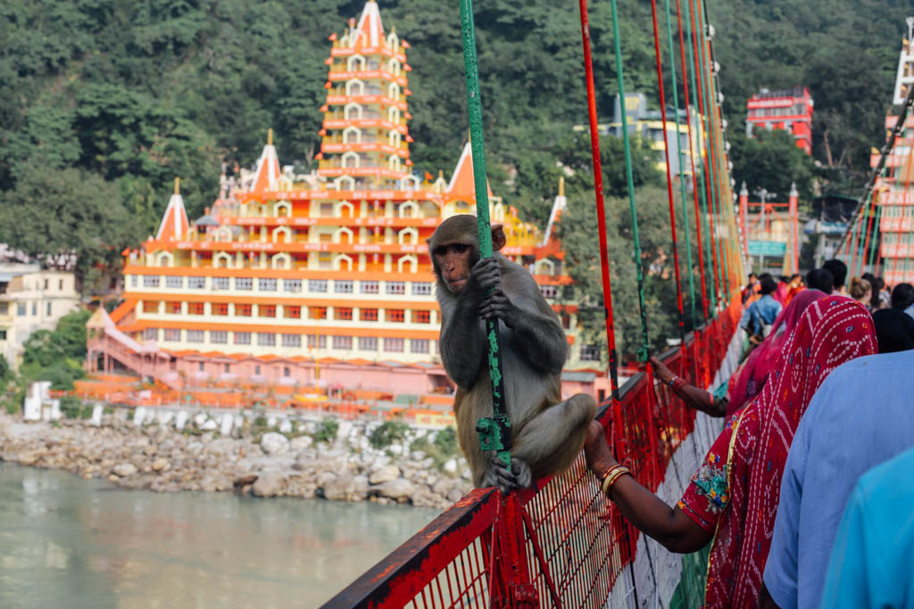 Photos of Rishikesh temple