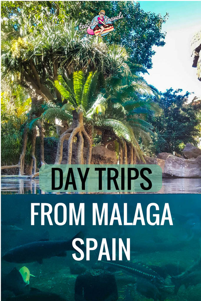 Day trips from Malaga Spain