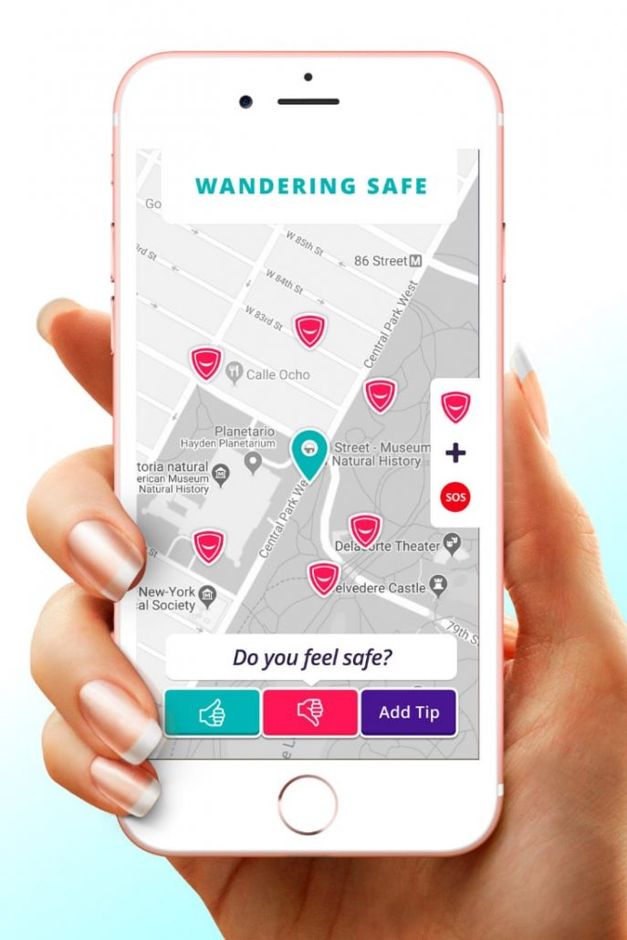 WanderSafe Device and App