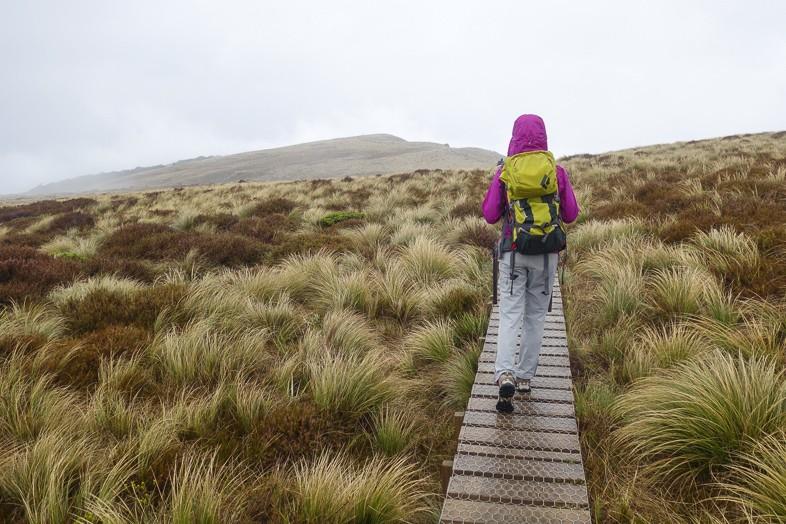 Trek New Zealand