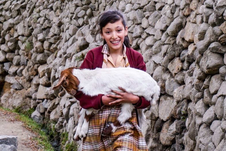 Pakistani girl with a goat