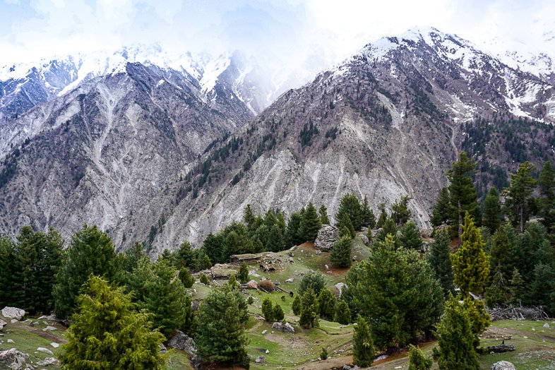 Fairy Meadows in Pakistan