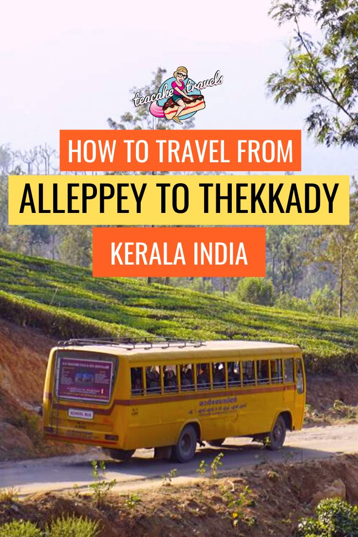 How to travel from Alleppey to Thekkady in Kerala India! There's plenty of ways you can get between the 2 locations - but unfortunately you cannot get here by train! Find out how to travel through Kerala India from an Alleppey Houseboat experience to Periyar National Park by clicking on the pin and heading to my Teacake Travels blog #kerala #safari #india #travelguide #southindia #travelbloggerlife #traveltips #tiger