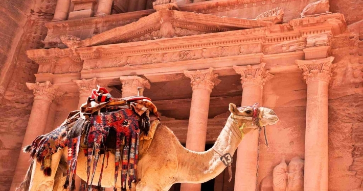 Photo of camel in the Petra, Jordan